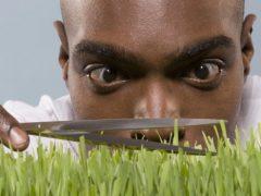 Cómo estar con el perfeccionismo |Tip mental 39